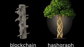 hashgraph blockchain